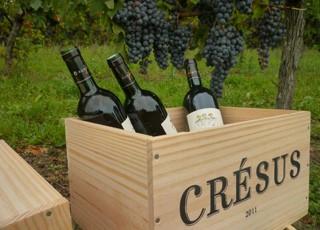 Les vins Château Crésus